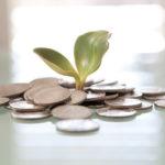 Какие монеты принимает сбербанк в 2018 году? ТОП 5 самых выгодных монет